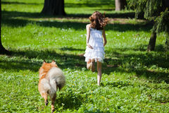 Girl and dog running on the meadow Royalty Free Stock Photos