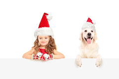 Girl and dog with santa hats posing behind a panel Royalty Free Stock Photos