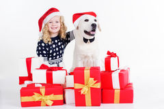 Girl and dog are sitting with christmas gifts Stock Images