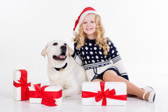 Girl and dog are sitting on studio Royalty Free Stock Photography
