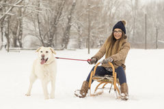 Girl and a dog in the snow. Young girl sitting on a sleigh and holding her dog`s leash while dog is standing in the snow next to the sleigh, both enjoying a royalty free stock photo