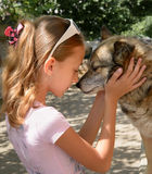 Girl and dog. Girl stands face to face with dog Royalty Free Stock Images
