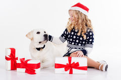 Girl and dog in studio isolated on white Stock Image