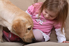 Girl and dog therapy Stock Image