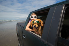 Girl and a dog in a truck on the beach Stock Images