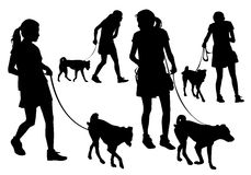 Girl with a dog. Girl walking with a dog on a leash. Silhouette on a white background Stock Photography