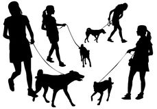 Girl with a dog. Girl walking with a dog on a leash. Silhouette on a white background Royalty Free Stock Photo