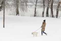 Girl and a dog walking in the snow Royalty Free Stock Photos