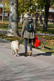 Girl and dog walking Royalty Free Stock Photos