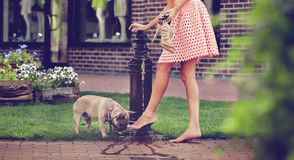 Girl with dog washing legs in the well Royalty Free Stock Photos