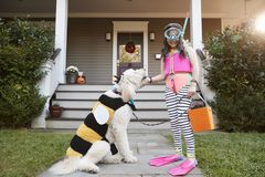 Girl With Dog Wearing Halloween Costumes For Trick Or Treating stock image