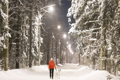 Girl and dog in winter forest covered with snow Stock Photo