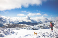 Girl with dog in winter mountains. Royalty Free Stock Image