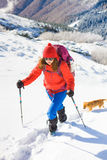 Girl with dog in winter mountains. Stock Photos