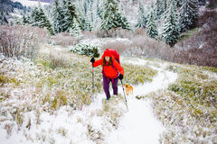 Girl with dog in winter mountains. Royalty Free Stock Photo