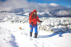 Girl with dog in winter mountains. Stock Photography