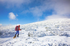 Girl with dog in winter mountains. Royalty Free Stock Photos