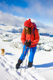 Girl with dog in winter mountains. Stock Image