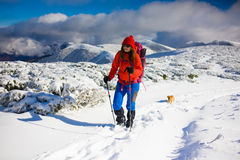 Girl with dog in winter mountains. Royalty Free Stock Images