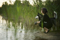The girl with a dog. The young girl with her Husky dog looking far away Royalty Free Stock Photo