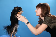 The girl with the doggie on a blue background Royalty Free Stock Images