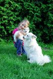 Girl with dogs. Girl playing with the dogs in the garden Stock Photo