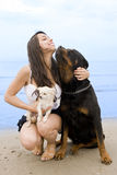 Girl and dogs. Young girl and her two dogs on the beach stock images