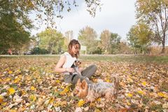 Beautiful young girl with her Yorkshire terrier dog puppy enjoying and playing in the autumn day in the park selective focus stock images