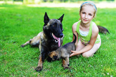 Girl  with dogs. Girl playing with dogs on grass Stock Image