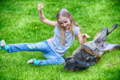 Girl  with dogs. Girl playing with dogs on grass Royalty Free Stock Photo