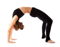 Girl doing gymnastics on white background Royalty Free Stock Photo