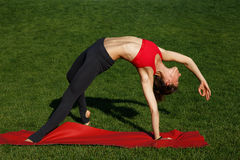 Girl doing stretching. green grass. Woman practices yoga in nature Royalty Free Stock Images