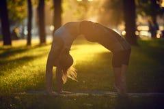 Girl is doing yoga, standing in bridge wheel pose urdhva dhanurasana in the park at sunset. Girl is doing yoga, standing in bridge wheel pose urdhva dhanurasana Stock Photography