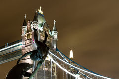 Girl With a Dolphin Stock Photo