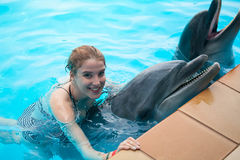 Girl and the dolphins Stock Photos