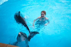 Girl and the dolphins Stock Image