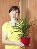 Girl with dracaena in the pot Stock Image