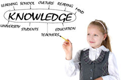 Girl drawing plan of knowledge Royalty Free Stock Images