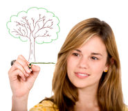 Girl drawing a tree on screen Royalty Free Stock Photo