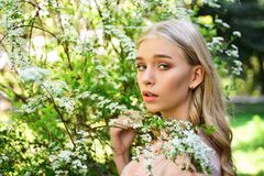 Girl on dreamy face, tender blonde near branches with white flowers, nature background. Lady walks in park on sunny. Spring day. Spring bloom concept. Young stock photo