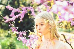 Girl on dreamy face, tender blonde near violet flowers of judas tree, nature background. Young woman enjoy flowers in. Garden, defocused. Lady walks in park on royalty free stock image