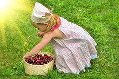 Girl in a dress with a basket of red cherries Stock Photos