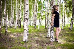 Girl in a dress in a birch grove Royalty Free Stock Photos