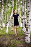 Girl in a dress in a birch grove Royalty Free Stock Photography