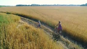 Girl in a dress with a child riding a bicycle along fields of wheat. Shooting with the drone. Beautiful landscape from a. Girl in a dress with a child riding a stock video footage