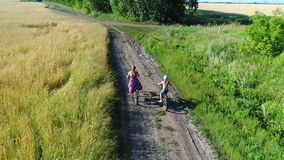Girl in a dress with a child riding a Bicycle along fields of wheat. Shooting with the drone. Beautiful landscape from a stock video