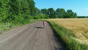 Girl in a dress with a child riding a bicycle along fields of wheat. Shooting with the drone. Beautiful landscape from a stock footage