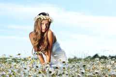 Girl in dress on the daisy flowers field Royalty Free Stock Photos