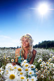 Girl in dress on the daisy flowers field Stock Image