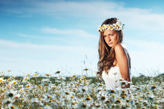 Girl in dress on the daisy flowers field Royalty Free Stock Image